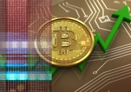 3d illustration of bitcoin over circuit background with